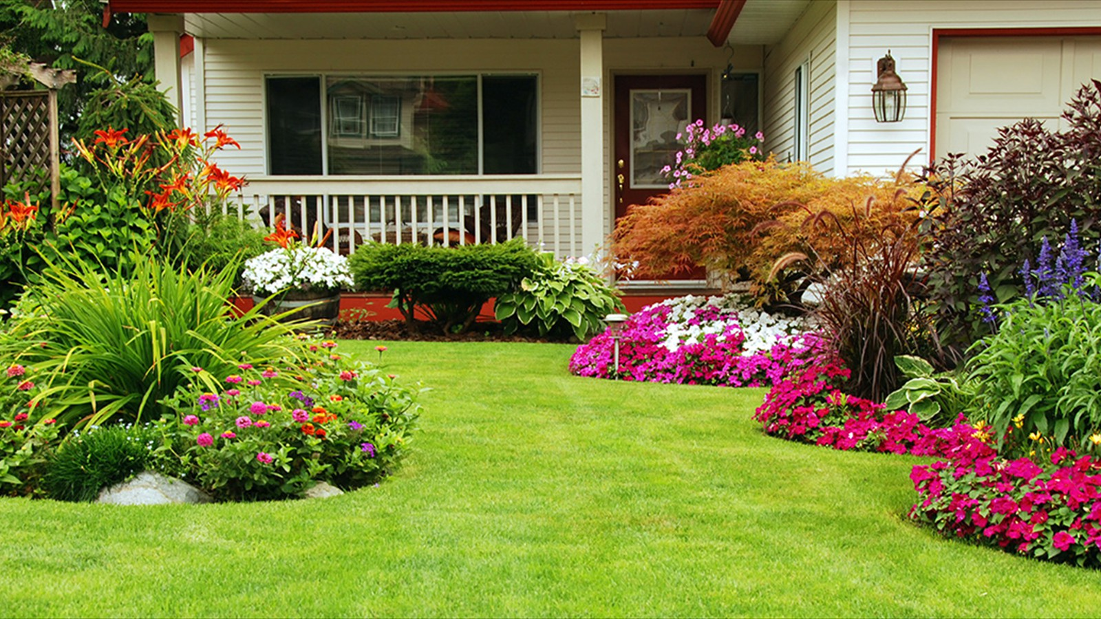 Lawn Maintenance for Your Lawn, Shrubs & Trees.