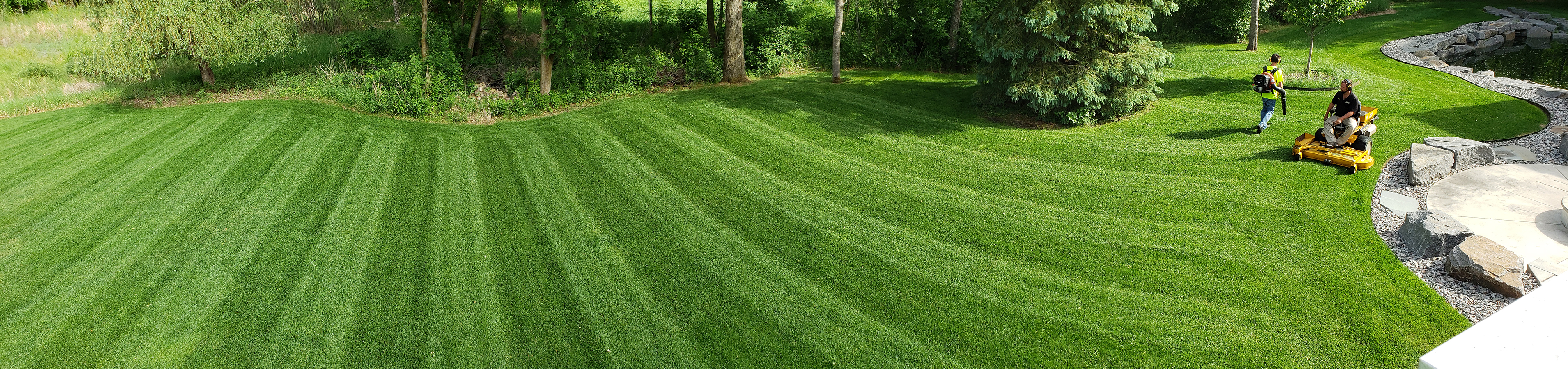 A Lawn Your Family Will Love
